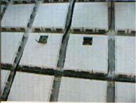 OA网络地板>郑州星光防静电地板沙龙365
