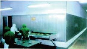 KD系列宽带式快速冻结装置