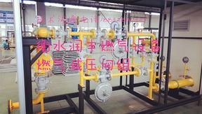 100Nm3/h燃气调压计量柜价格燃气调压计量柜厂家