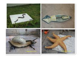 供应生物模型海星、蜗牛、蚯蚓、涡虫