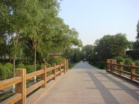 四川驰升桥梁栈道水泥仿木栏杆 仿木护栏