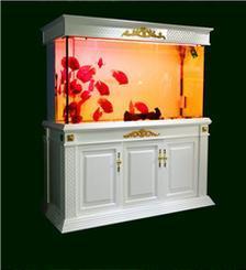 鱼缸设计 海鲜池设计