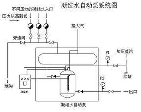 疏水自动泵