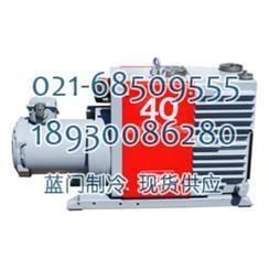 爱德华E2M275真空泵