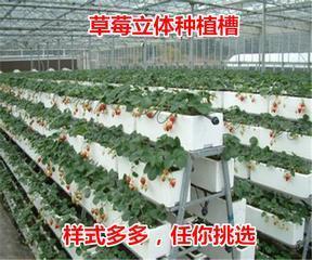 济南8203;热镀锌优质苗床网、移动、固定、花卉苗床网