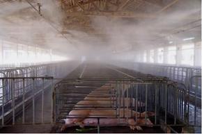 供应喷雾加湿器,承接喷雾降温加湿消毒人造雾工程