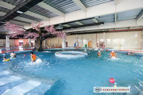 泳池系列工程