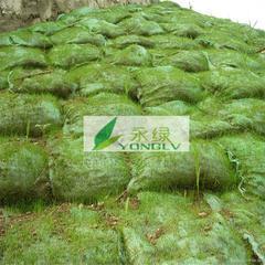植生袋植草袋护坡