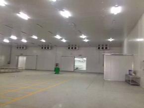 上海苏世定制物流冷库、超市冷库、生鲜冷库、医药冷库