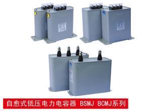 自愈式低压并联电容器(莱宝)