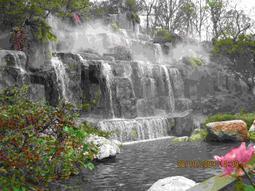 假山1龙泉