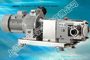 RP无极变速转子泵(常规型转子泵)