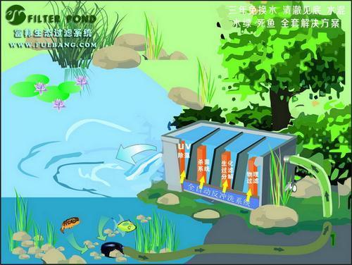 合肥阳台鱼池水过滤哪家强富邦过滤器媒体推荐图片