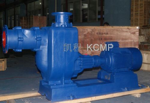 65ZW25-32型自吸式排污泵
