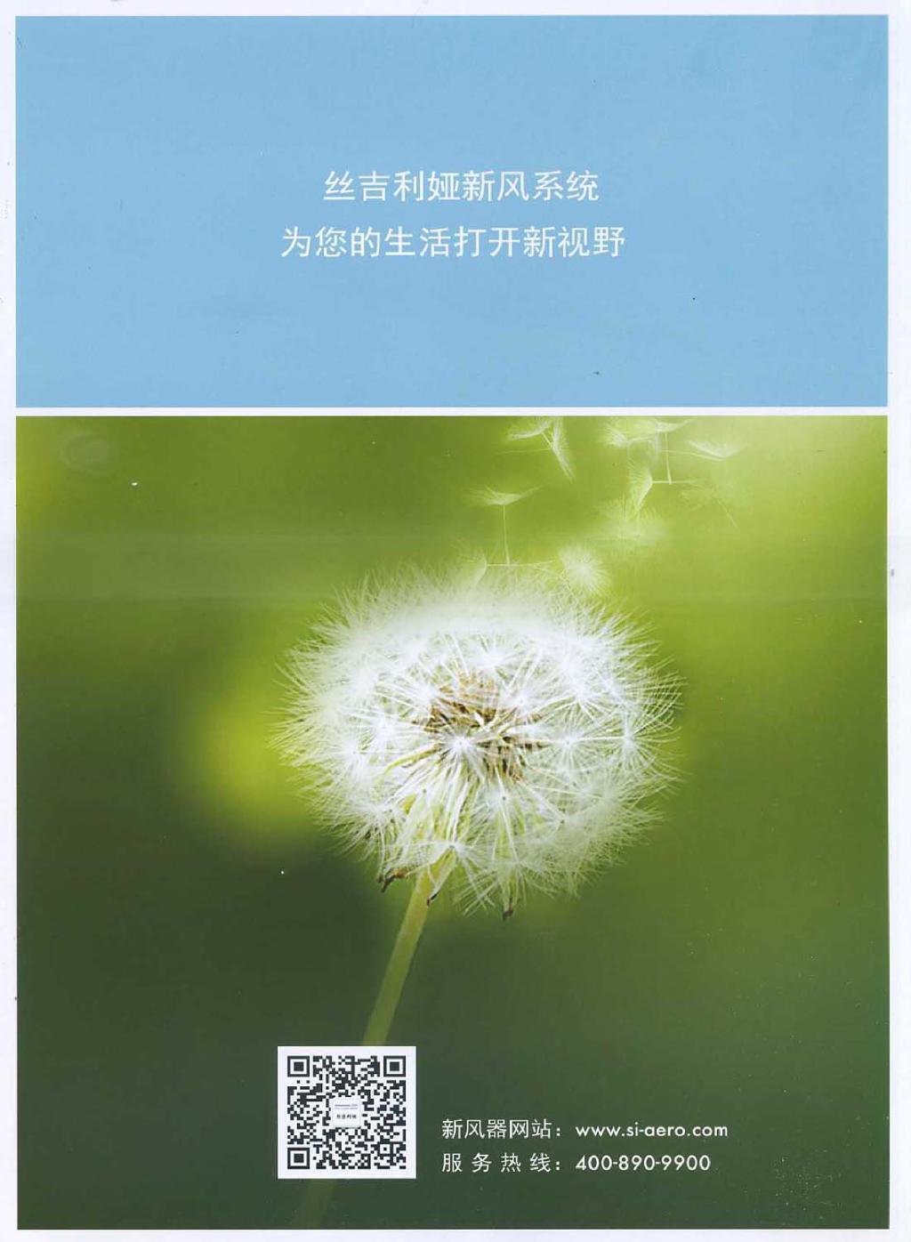 背景 壁纸 矢量 植物 种子 1024_1396 竖版 竖屏 手机