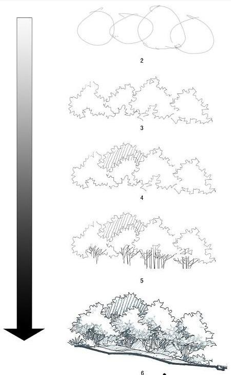 设计师经验之谈景观断面手绘技法