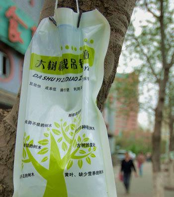 新疆乌鲁木齐市园林绿化工程公司苗木基地负责人李昌