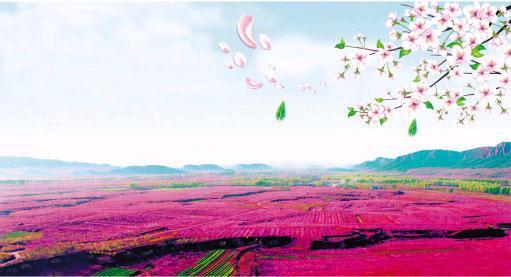 北京平谷第十一届国际桃花节即将开幕