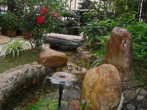 阜阳景观石-阜阳园林景观石-园林景观石