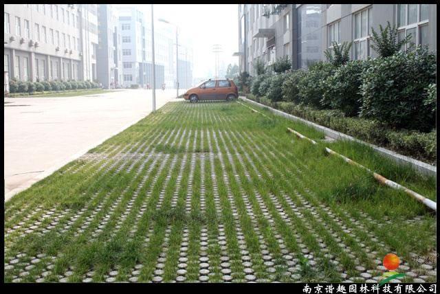 南京双龙街高承载植草地坪