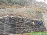 某公园挡墙采用客土喷播绿化