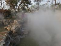 苏州雾森桃花岛公园人造雾项目验收照片