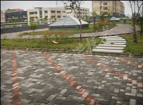种植屋面顶板漏水的治理