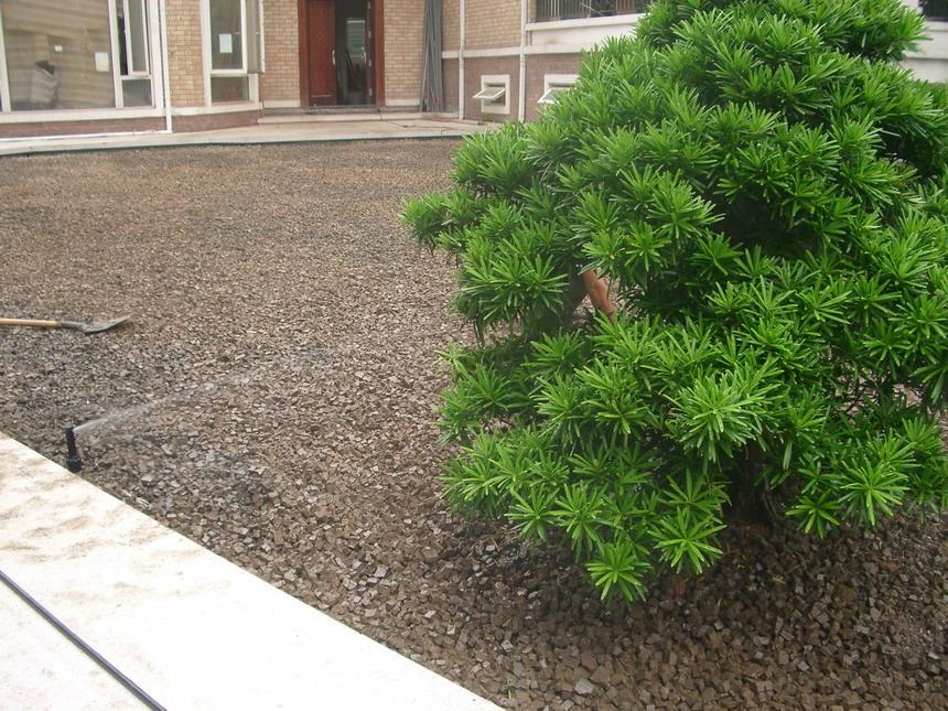 珠江别墅区庭院全自动喷灌工程