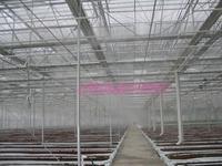 高压喷雾系统种植温室加湿、降温应用
