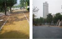 青岛马濠公园生态透水工程