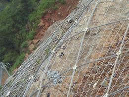 环形防护网 环形主动防护网 防护网厂家