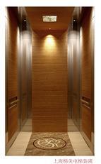 别墅电梯装饰TM-01