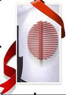 采暖:散热器:瓦萨齐散热器+法格壁挂炉