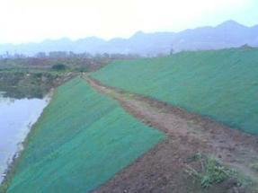 三维植被网,边坡植草绿化