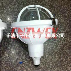 FAD-S-L100gZ三防灯 防水防尘防腐灯