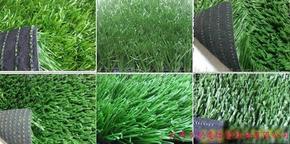 天津人造草坪厂家-人工草坪-人造草皮