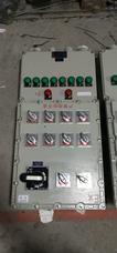 BXM防爆照明配电箱