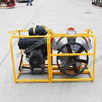 便携式小型可移动防汛打桩机