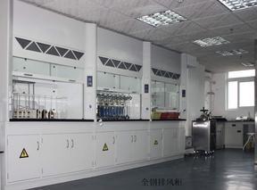 通风柜百色实验室中央台钦州实验室家具实验凳药品柜