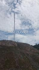 高速5G通讯塔美化塔灯杆塔避雷铁塔通讯仿生树单管塔