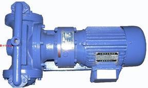 隔膜泵:DBY型电动隔膜泵(配四氟膜片)