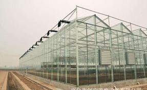 青州广源玻璃温室(12米*4米)