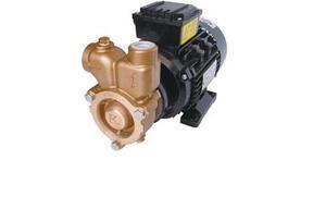 旋涡泵、气液混合泵、溶气泵、臭氧水混合泵、气浮泵、气水混合泵、混气泵、曝气泵、气液泵
