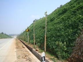 大面積三維網掛網施工邊坡綠化山體復綠河南景繡繪遠