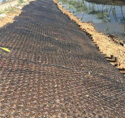 護坡加筋麥克墊&加筋三維網墊植草護坡