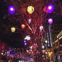 华妮照明LED桃子造型灯 HN-001