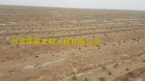 鹤壁淇滨区红薯大田滴灌带|大田滴灌|滴水带价格