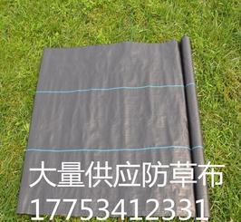 大量供应防草布