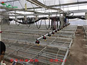 温室移动喷灌机技术参数 安装要求 正品销售