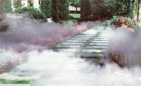 人间仙境-雾森喷泉